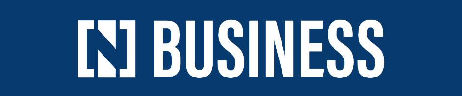 N Buisness logo